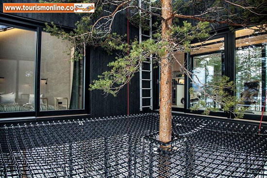هتل زیبا و جالب درختی!