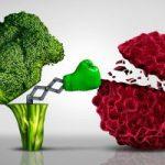پیشگیری از سرطان سینه با میوه ها و سبزیجات