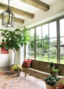 توصیه هایی برای مراقبت از گیاهان آپارتمانی