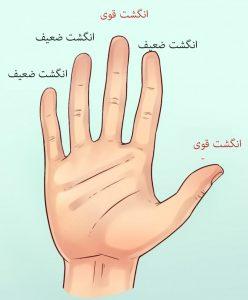 شخصیت شناسی از روی شکل دست ها