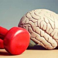 راهکار های ساده برای پیشگیری از آلزایمر