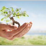 متن زیبای روز درختکاری