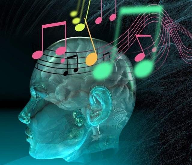 شخصیت شناسی - موسیقی مورد علاقه