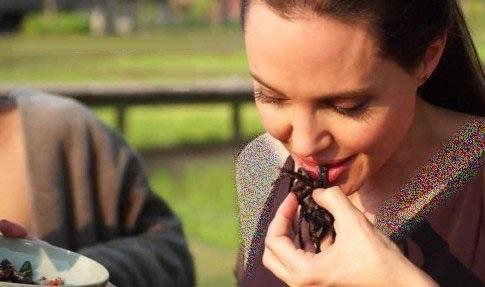 آنجلینا جولی،خوردن عنکبوت