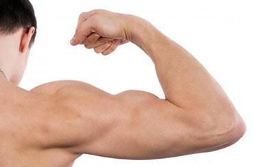 تقویت عضلات دوسر و سه سر بازوها