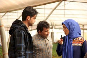 داستان سریال نوروزی مرز خوشبختی + عکس