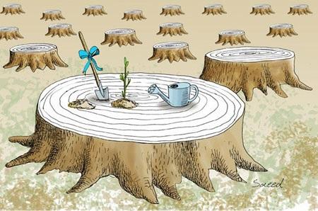 عکس مفهومی روز درختکاری