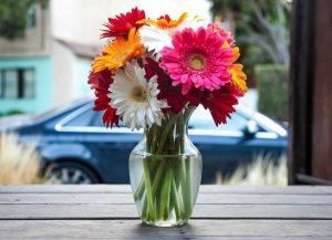 روش هایی ساده برای تازه نگه داشتن گل ها