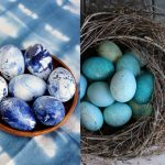 آموزش روش های ساده برای رنگ کردن تخم مرغ عید