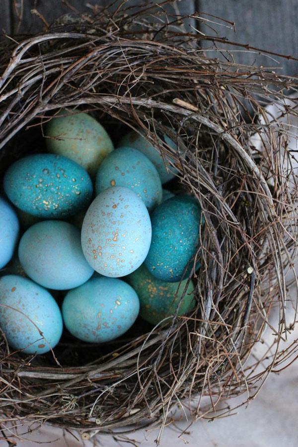 رنگ کردن تخم مرغ عید به رنگ آبی