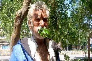 مردی که فقط شاخه و برگ درخت می خورد !