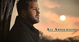 بیوگرافی و عکس های جدید علی عبدالمالکی