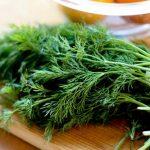 ۹ خاصیت فوق العاده سبزی شوید را بشناسید+ عکس