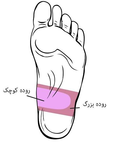 اصلی ترین نقاط ماساژ پا برای بهبود سلامتی + عکس