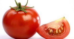 ۳ روش نگهداری گوجه فرنگی برای زمستان