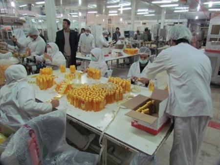 گزارشی درباره کارخانه فیروز که 86% کارکنان آن معلول هستند+عکس
