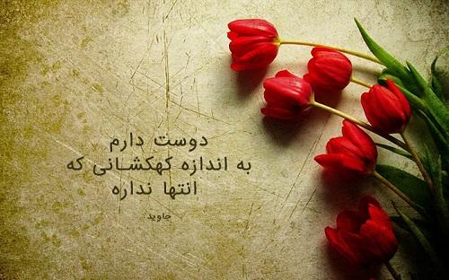 عکس گل با جملات عاشقانه و احساسی