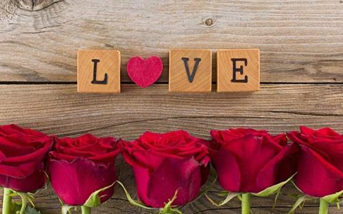 عکس عاشقانه و احساسی گل رز