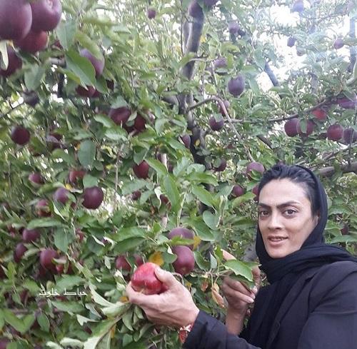 شهربانو منصوریان