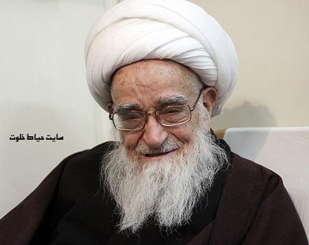 آیت الله صافی گلپایگانی صد ساله شد+بیوگرافی