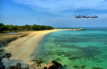 مسافرت به سواحل خلیج فارس