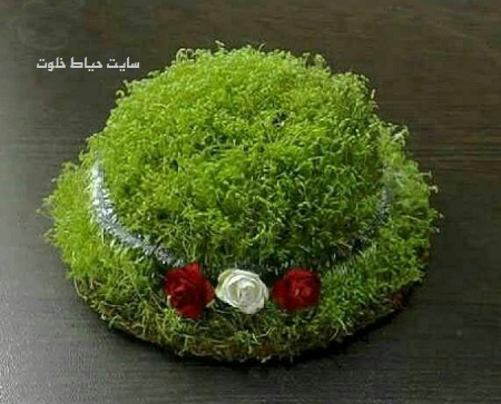 آموزش درست کردن سبزه عید با خاکشیر+ تهیه سبزه روی کوزه