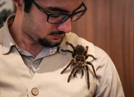 با مرد عنکبوتی ایران آشنا شوید!