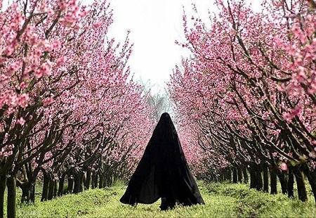 عکس نوشته درباره حجاب و عفاف ، عکس حجاب اسلامی