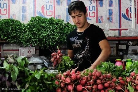 درآمد 15 میلیون تومانی یک سبزی فروش با چرخ دستی!