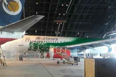 هواپیمای تیم ملی ایران در جام جهانی