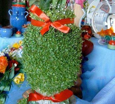 زیباترین سبزه های عید نوروز
