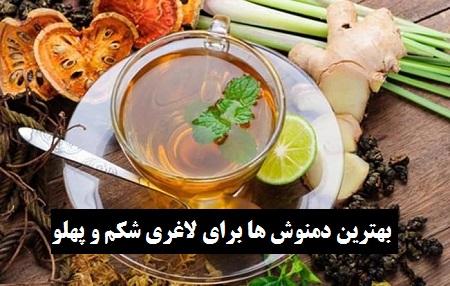 دمنوش های گیاهی ترکیبی برای لاغری شکم و پهلو