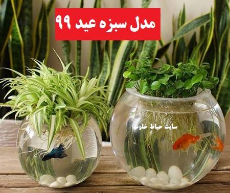 مدل سبزه عید ۹۹ , انواع سبزه عید و طرز تهیه